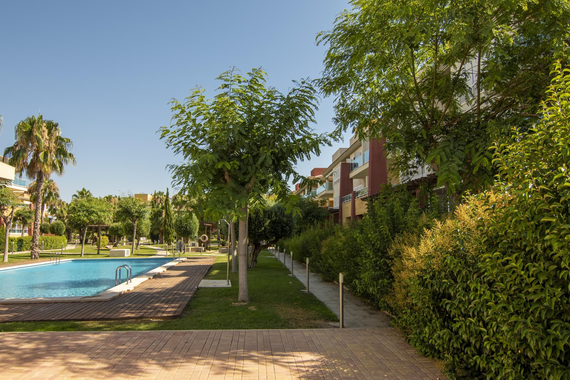 Los Olivos - Hacienda del Álamo - Murcia