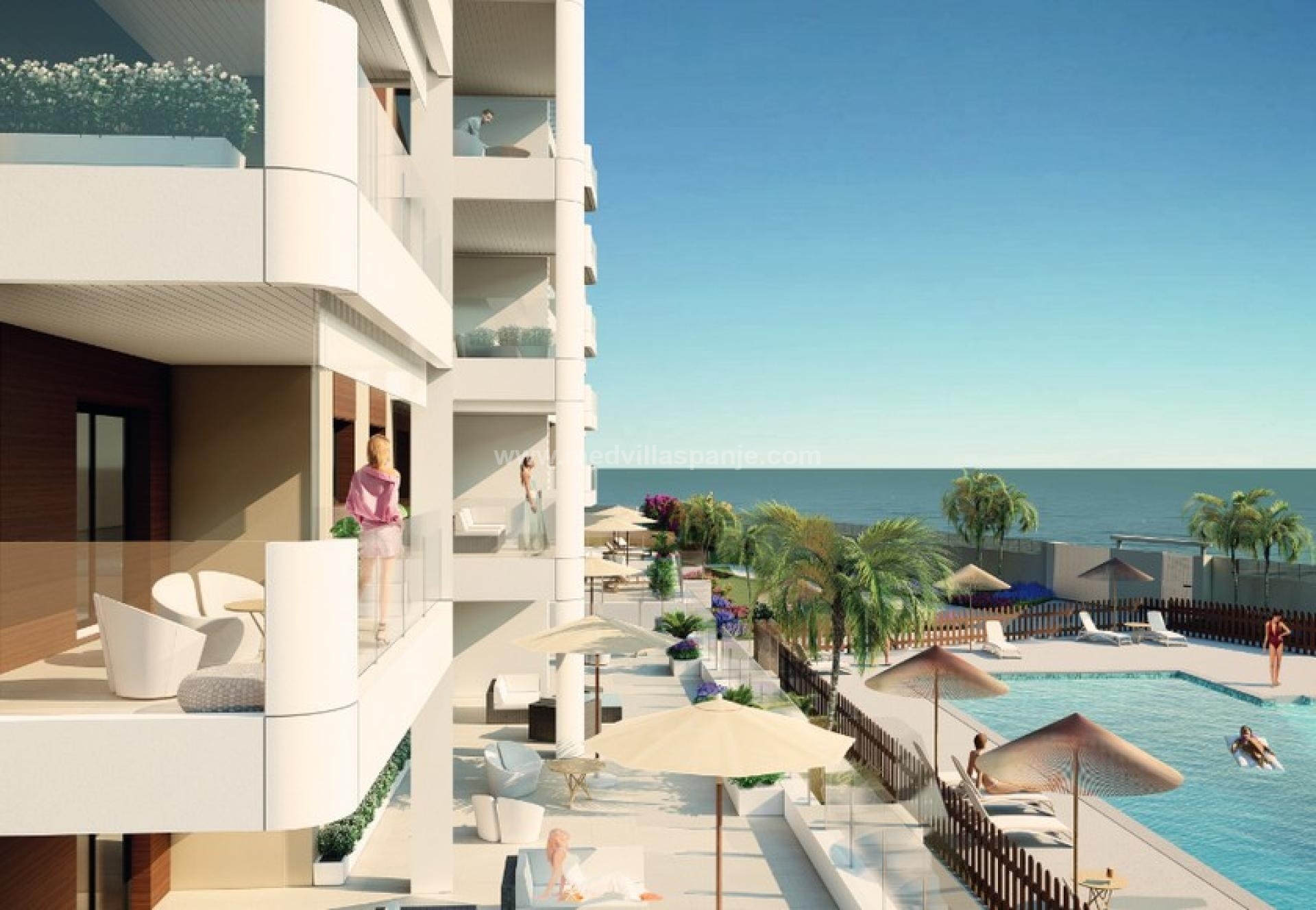 Mil Palmeras apartments first line sea, Costa Blanca South in Medvilla Spanje