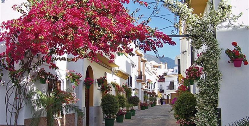 EsteponaMedvilla Spanje